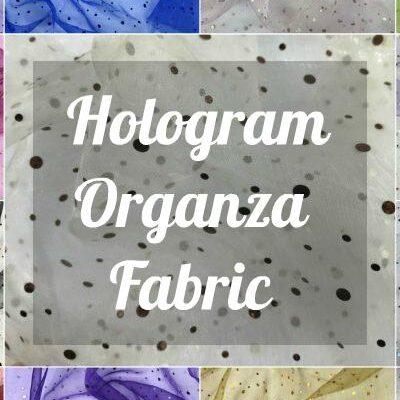 Hologram Organza Fabric