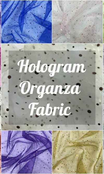 Hologram Organza Fabric