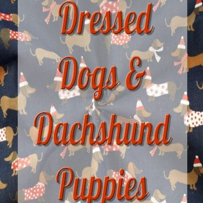 Dressed Dogs Dachshund Puppies