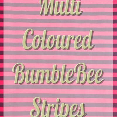 MultiColoured Bumblebee Stripes